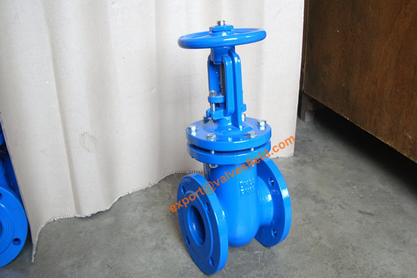BS5163 metal Seated Rising Stem Gate Valve