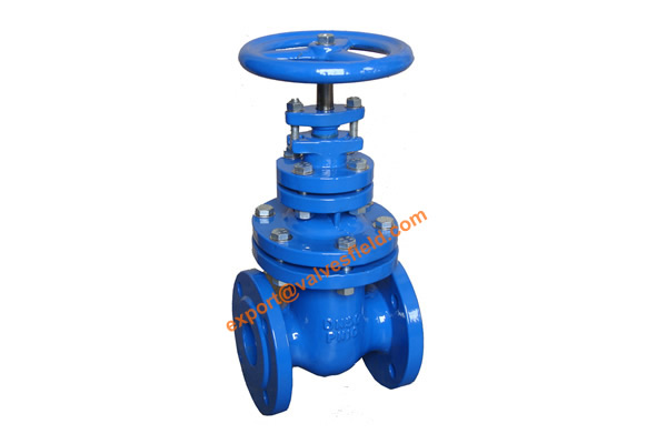 BS5163 metal Seated Non Rising Stem Gate Valve