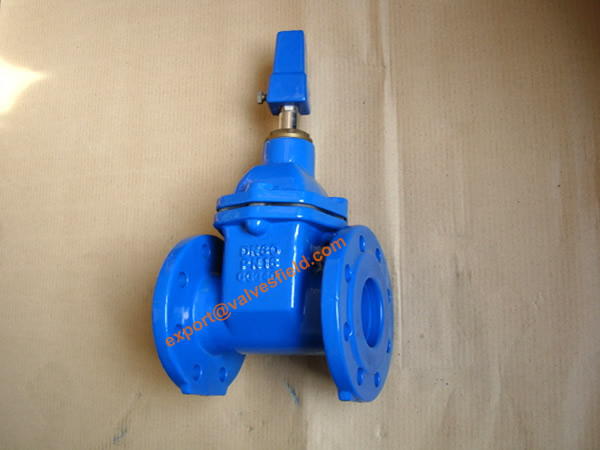 BS5163 Resilient Seated Non Rising Stem Gate Valve