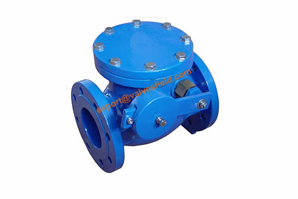 BS 5153 Swing Check Valve